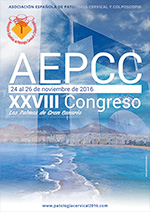 aepcc-congreso2016